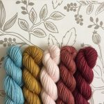 Little Fox Yarns trunk show